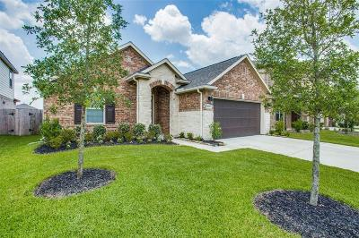 Katy Single Family Home For Sale: 24103 Kingdom Isle Lane