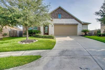 Katy Single Family Home For Sale: 29010 Blue Finch Court