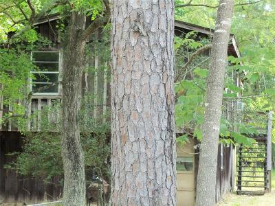 Houston Single Family Home For Sale: 13826 Lakeside Terrace Drive