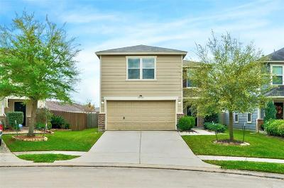Single Family Home For Sale: 20506 Ginnydale Drive