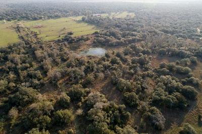 Wharton County Farm & Ranch For Sale: Dewberry Lane