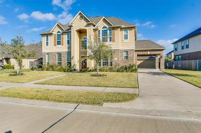 Southern Trails Single Family Home For Sale: 3405 Leafstone Lane
