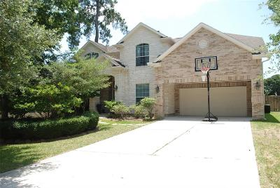 Conroe Single Family Home For Sale: 2508 Eagle Post Drive
