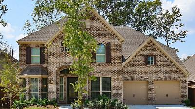 Single Family Home For Sale: 16807 Whiteoak Canyon Drive