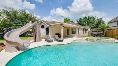 Katy Single Family Home For Sale: 25003 Ivy Trace Lane