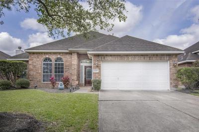 Rosharon Single Family Home For Sale: 14209 Spring Knoll Lane