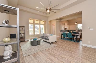 Sugar Land Single Family Home For Sale: 6202 Garden Lakes Lane