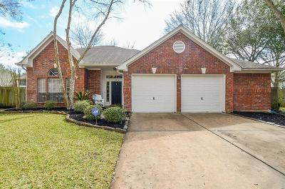 Sugar Land Single Family Home For Sale: 4114 New Meadows Court