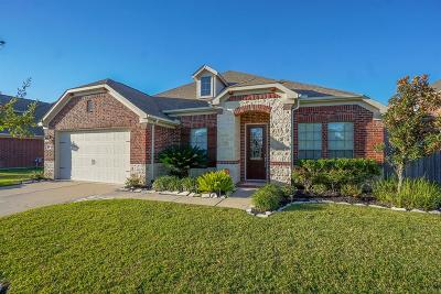 Fort Bend County Single Family Home For Sale: 25806 Celtic Terrace Drive