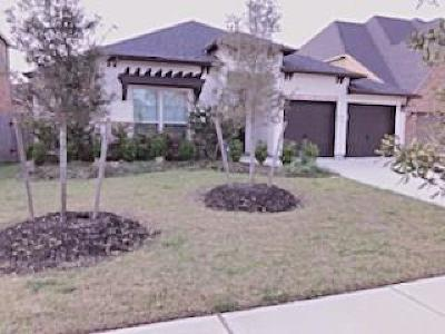 Sugar Land Single Family Home For Sale: 4716 Hickory Branch Lane