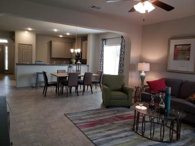 Conroe Single Family Home For Sale: 307 Nettle Tree Court