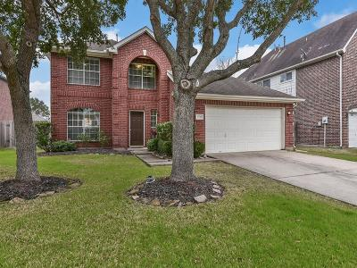 Sugar Land Single Family Home For Sale: 5715 Black Canyon Court
