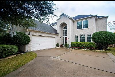 Houston Single Family Home For Sale: 12223 Shady Downs Drive