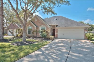 Manvel Single Family Home For Sale: 3023 Humble Drive