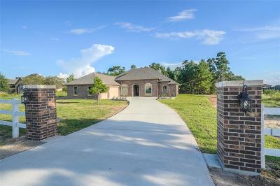 Montgomery Single Family Home For Sale: 8858 Grand Lake Estates Drive