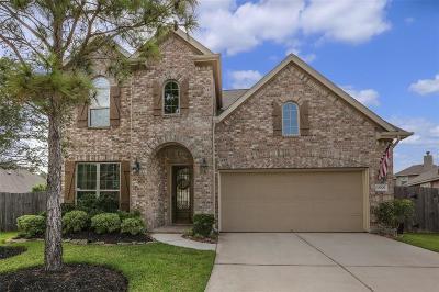Houston Single Family Home For Sale: 13707 Slate Mountain Lane