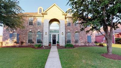 Friendswood Single Family Home For Sale: 2001 Sandy Lake Drive