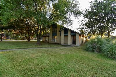 Alvin Single Family Home For Sale: 31 Finetta Lane