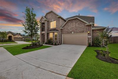 Tomball Single Family Home For Sale: 12039 Treetop Hills Lane