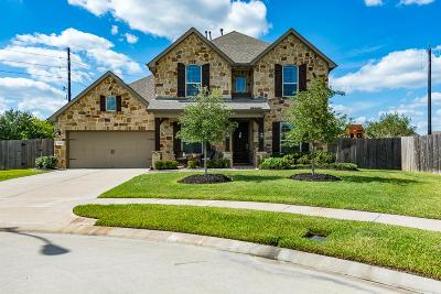 Tomball Single Family Home For Sale: 13326 Spurlin Meadow Drive