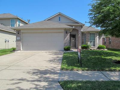 Houston Single Family Home For Sale: 6818 Mimosa View Lane