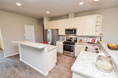 Rosenberg Single Family Home For Sale: 5719 Grande Gables Drive