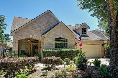 The Woodlands Single Family Home For Sale: 27 Veranda View Place
