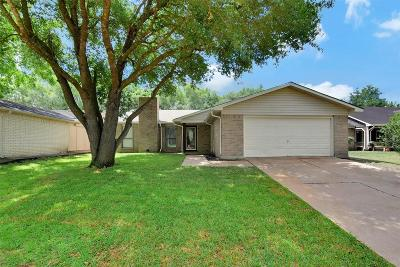 Hockley Single Family Home For Sale: 24011 Palo Dura Drive