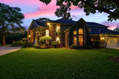 Sugar Land Single Family Home For Sale: 13902 Placid Woods Court