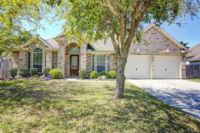 Pearland Single Family Home For Sale: 3118 Ivydale Road