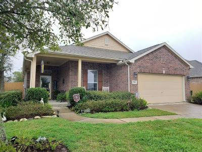 League City Single Family Home For Sale: 704 Rufina Street