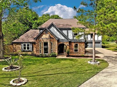 Katy Single Family Home For Sale: 2819 Cottonwood Drive