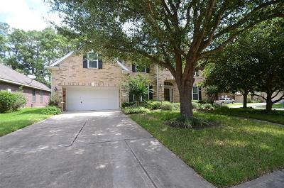 Katy Single Family Home For Sale: 23802 Hackberry Drive