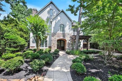 Conroe, Spring, The Woodlands Single Family Home For Sale: 6 Bunnelle Way