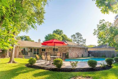 Sugar Land Single Family Home For Sale: 13935 Vinehill Drive