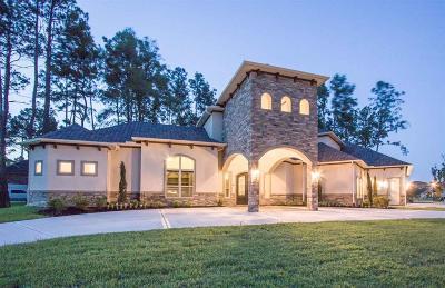 Cypress Single Family Home For Sale: 13602 Kluge Corner Lane