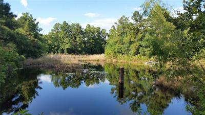 Conroe Farm & Ranch For Sale: Sleepy Hollow Rd