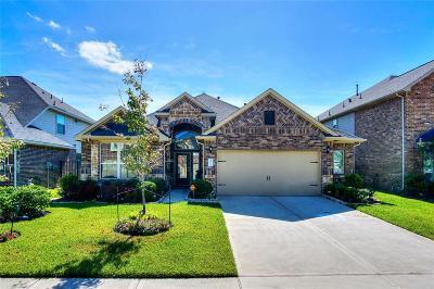 Missouri City Single Family Home For Sale: 3811 Pantano Court