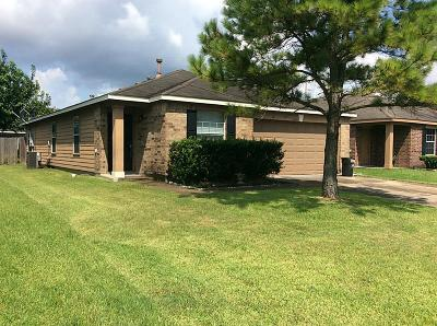 Houston Single Family Home For Sale: 16939 Suffolk Bridge Lane