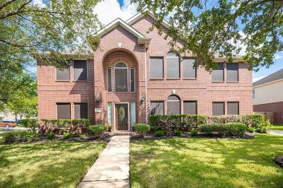 Sugar Land Single Family Home For Sale: 1003 Broken Trail Court