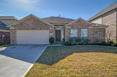Conroe Single Family Home For Sale: 9976 Western Ridge Way