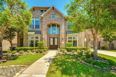 Sugar Land Single Family Home For Sale: 1519 Whitfield Street
