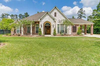 Tomball Single Family Home For Sale: 14510 Jasmine Springs Drive