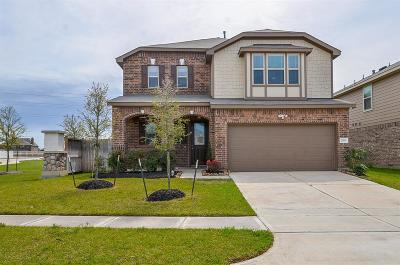 Katy Single Family Home For Sale: 22603 Auburn Valley Lane