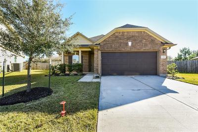 Katy Single Family Home For Sale: 2302 Village Stone Court
