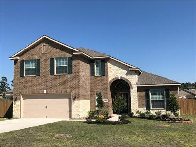 Single Family Home For Sale: 18895 Maverick Ranch Road
