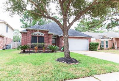 Houston Single Family Home For Sale: 7062 River Garden Drive