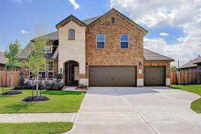 Pearland Single Family Home For Sale: 2804 S Galveston Avenue