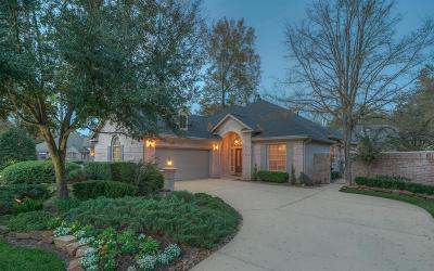 The Woodlands Single Family Home For Sale: 14 Highland Green Place