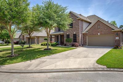 Porter Single Family Home For Sale: 25006 Stillhouse Springs Drive